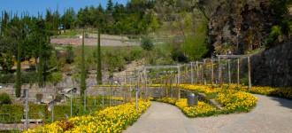 Blühende Blumenbeete in den Gärten von Schloss Trauttmansdorff, Meran Südtirol