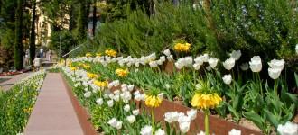 Frühlingserwachen in den Gärten von Schloss Trauttmansdorff, Meran Südtirol