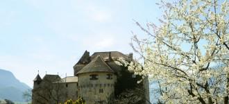 Frühling in Schenna, Schloss Schenna