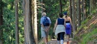 Einen unvergesslichen Wanderurlaub in Schenna verbringen