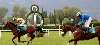 Pferderennplatz Meran